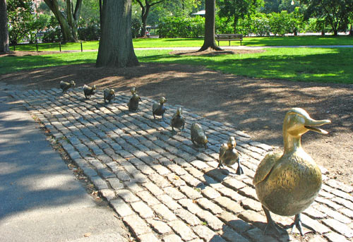 make-way-for-ducklings-2